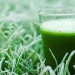Grüner Smoothie im Winter