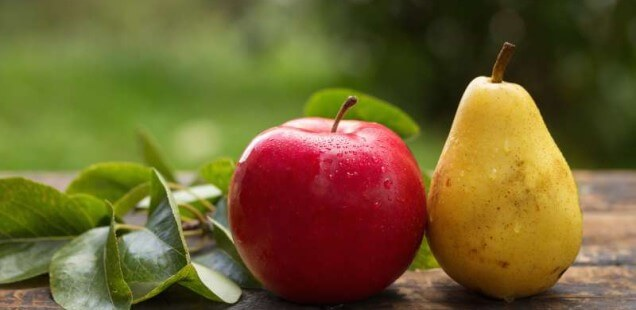 Obst im Winter