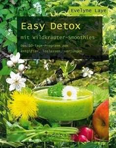 Easy Detox - Buch über Smoothies