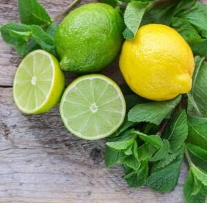 Zitronen- und  Limetten mit Schale in den Smoothie-Mixer