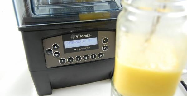 Vitamix The Quiet One Test